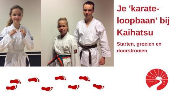 hoe je karate-loopbaan er bij Kaihatsu uit kan zien